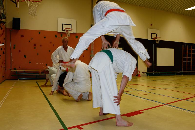 Chushin kyobiun do karate groningen